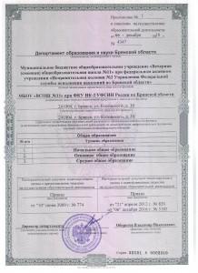 Лицензия (прилож)